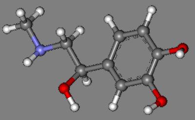 Adrenalin Stresshormon