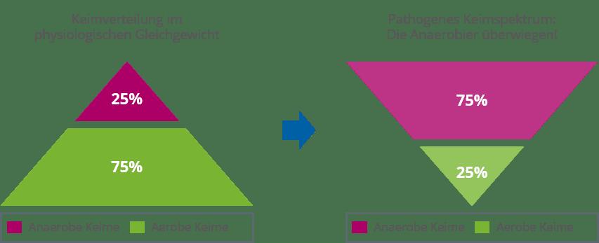 parodontitis bakterientest - Anaerobe und Aerobe Keime im Mund